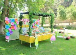 Kız Çocuk Konseptli Doğum Günü Organizasyonu