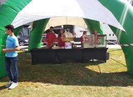 Patlamış Mısırcı ve Pamuk Şekerci Kiralama Festival Organizasyonu İzmir