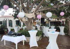 Düğün Organizasyonu Ses Sistemi Kiralama İzmir