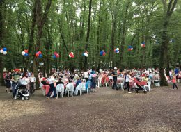 Balon Süsleme Şirket Piknik Organizasyonu İzmit