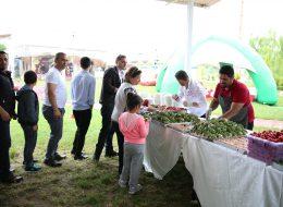 Piknik İkramları ve Kahvaltı Servisi Aile Günü Organizasyonu İzmir