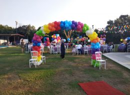 Kapı Takı Balon Süsleme Milas Doğum Günü Organizasyonu