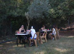 Falcı Kiralama Piknik Organizasyonu İzmir