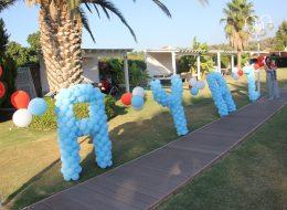Renkli Özel Şekilli Balon Hizmeti İzmir Organizasyon