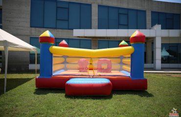 Parti Şatosu ve Şişme Çocuk Oyuncakları Kiralama İzmir