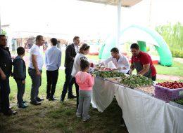 Piknik İkramları İzmir Piknik Organizasyon