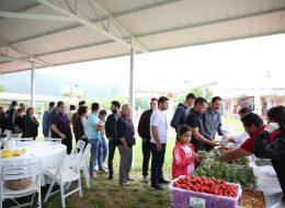 Piknik Organizasyonu İkramlık Temini İzmir