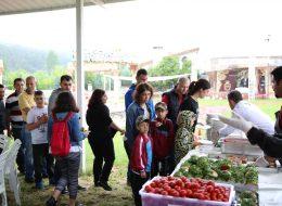 Profesyonel Servis Elemanı Kiralama ve Piknik İkramları İzmir Piknik Organizasyonu