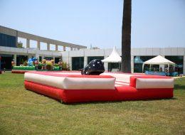 Kiralık Rodeo İzmir Şişme Oyuncak Temini